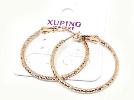 №6090 Сережки XuPing